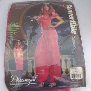 Dreamgirl Halloween Costume Size XS